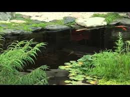 Aquascape Water Features 8 Best Helpful Pond Products Images On Pinterest Ponds Water