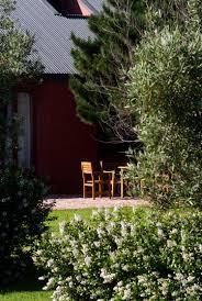 Backyard Vineyard Design by Wattlebrook Vineyard Michael Cooke Garden Design