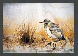 35 best czapla siwa blue heron images on pinterest blue heron