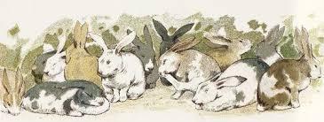 vintage rabbit lots of rabbits reusableart