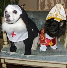 Halloween Costumes Husky Dog Halloween Pet Costumes 2013 Petful