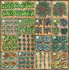 planning a vegetable garden vegetable garden learning and gardens