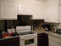 Kitchen Cabinet Refinishing Kits Interior Rustoleum Cabinet Transformation Reviews Rust Oleum