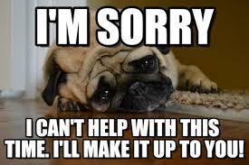 Sorry Meme - i m sorry sad pug meme on memegen