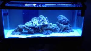 Live Rock Aquascaping 75 Gallon Reef Build Process Liverock Aquascape Cycling Video 5
