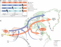 Genetic Map Of Europe by The Genetic Prehistory Of The New World Arctic Science
