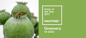 2017 Color Of The Year Pantone And The 2017 Pantone Color Of The Year Is U2026
