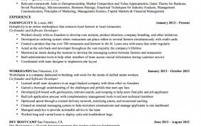 professional resume software permalink to software engineer resume examples resume