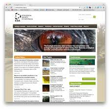 trends in web design mountainriver cms