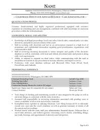 Sample Resume Objectives For Network Administrator by Free Federal Resume Sample From Resume Prime