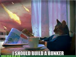 Newspaper Cat Meme - doomsday cat is a little too late memebase funny memes