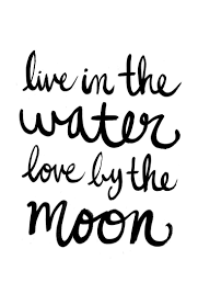Best 25 Mermaid Quotes Ideas On Pinterest Ocean Quotes Sea Quotes From The Color Of Water About Race With Page Numbers