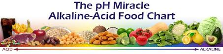go for more alkaline foods high acidity leads to weight gain
