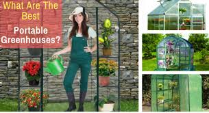 what are the best portable greenhouse kits back to my garden