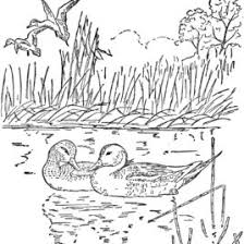 nature scene coloring pages river scene coloring page kids drawing and coloring pages marisa