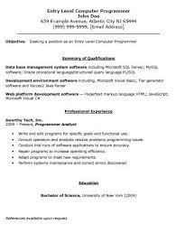 Web Designer Resume Sample Programming Resume Examples Web Developer Resume Sample Senior