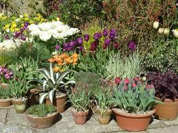 Unique Plant Pots Garden Design Garden Design With Unique Plant Pots With Wine