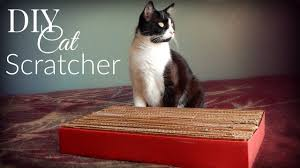Cardboard Cat Scratcher House Diy Cat Toys Cardboard Cat Scratcher The Sweetest Journey Youtube