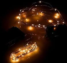 winter 10 indoor outdoor micro led light string