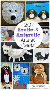 best 25 arctic animals ideas on pinterest polar bears for kids