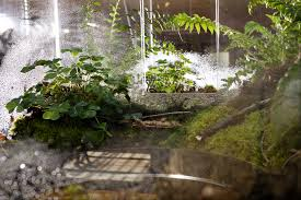 stick your head inside a terrarium at depaul u0027s new soil exhibit