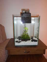 Wall Aquarium by Fish Tank Best Wall Aquarium Ideas On Pinterest Home Fish