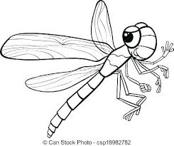 coloring pages insects bugs coloring pages insects insect coloring page bugs coloring page