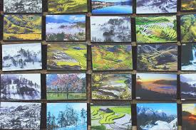 painting on glass windows free images window biology material stained glass painting