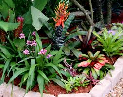 Florida Backyard Landscaping Ideas by 426 Best Backyard Haven Images On Pinterest Landscaping Gardens