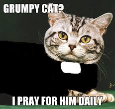 Episcopal Church Memes - what to do about grumpy cat christian funny pictures a time