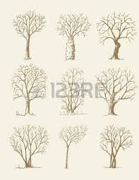 trees sketch set vintage vector illustration engraved style