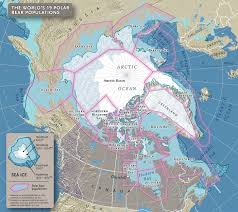 Population Density Map Of Canada by The Truth About Polar Bears Canadian Geographic
