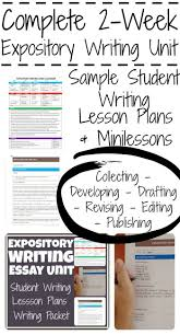 best 25 expository essay examples ideas on pinterest examples