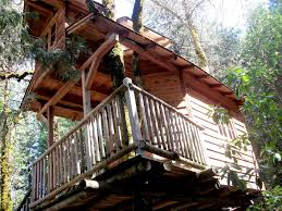 best tree houses best tree house hotels in the world unusual places to stay