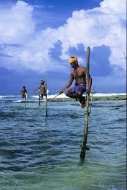 White Flag Incident Sri Lanka 71 Best Sri Lanka Images On Pinterest Sri Lanka Trips And