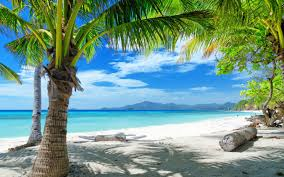 is it safe to travel to mexico images Is mexico safe to travel to beach 39 n pool gear jpg
