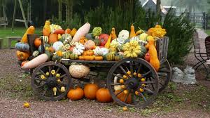 download wallpaper 1920x1080 vehicle pumpkin crop grades