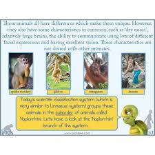 evolution and inheritance darwin planbee single lesson