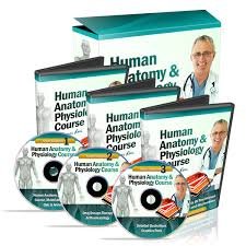 Human Anatomy And Physiology Study Guide Pdf ø The 1 Human Anatomy And Physiology Course ø Learn About The
