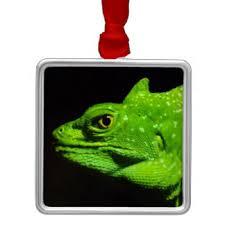 basilisk lizard ornaments keepsake ornaments zazzle
