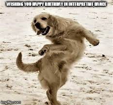 Birthday Dog Meme - dancing birthday dog imgflip