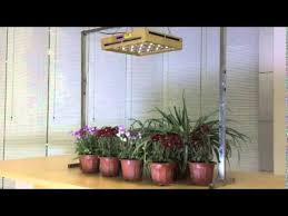 Led Grow Lights For Indoor Plants And Led Plant Grow Lights Youtube