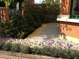 front garden design ideas low maintenance uk unique small garden
