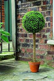 Pre Lit Topiary 76 Best Topiaries Images On Pinterest Topiaries Topiary Garden