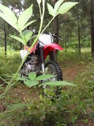 honda 150r bike riding a crf150 a psyco used bike test ride motopsyco u0027s asylum