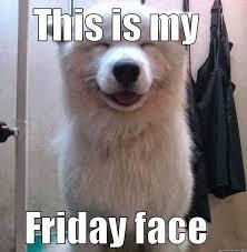 Dog Lover Meme - show me your friday faces dogmom dogdad dogs dog doglover