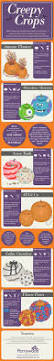 different ideas for pumpkin carving 13 best autumn days images on pinterest