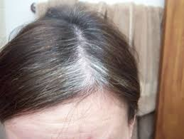 grey hair highlights and lowlights best hair color for gray hair coverage natural dye at home semi