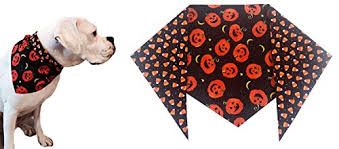 best halloween dog bandana out of top 15