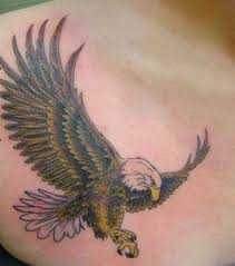 bikin tattoos display your strength with eagle tattoos